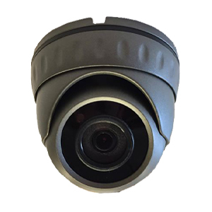 Black Box 1080P 3.6mm Mini 20m IR Ball Dome, Supports TVI, AHD, CVI and Analogue. Grey