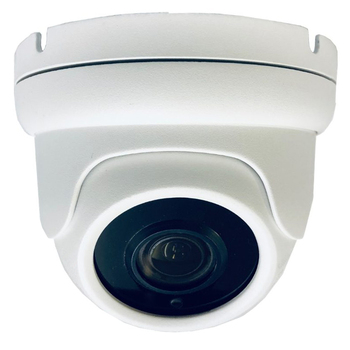 5MP 2.7-13.5m Motorised 30m IR Ball Dome, Supports TVI, AHD, CVI and Analogue Outputs. White